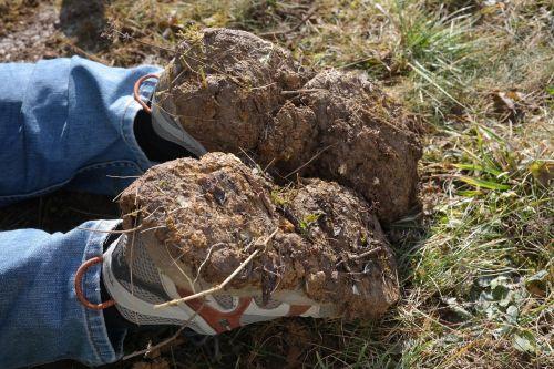 gardening work shoes