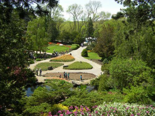 gardens flowers green