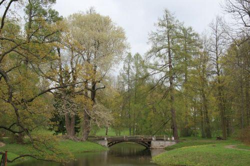 Gardens On Tsarskoe Selo Estate