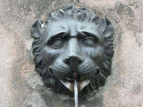 gargoyle fountain lion