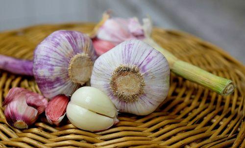 garlic substantial smell