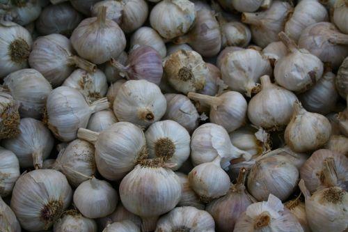 garlic market food