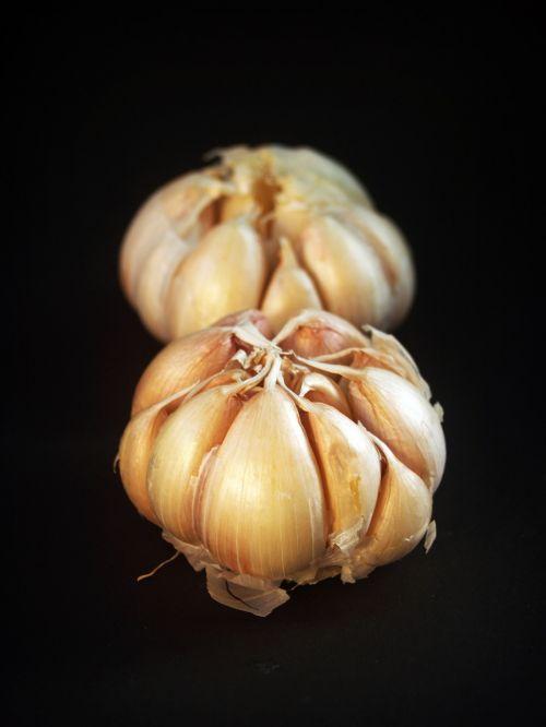 garlic meals white