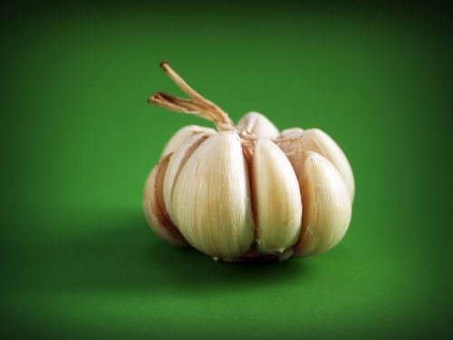 garlic meals seasoning