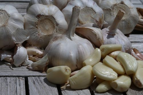 garlic food onion