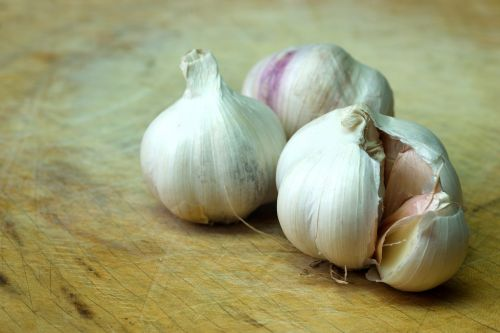 garlic food condiment