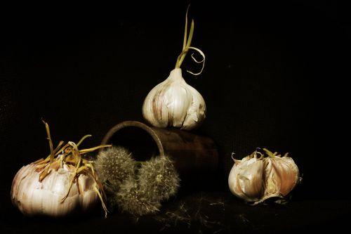 garlic still life staging