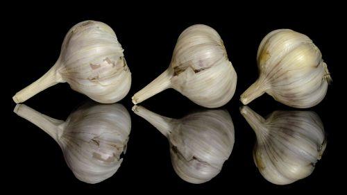 garlic food seasoning