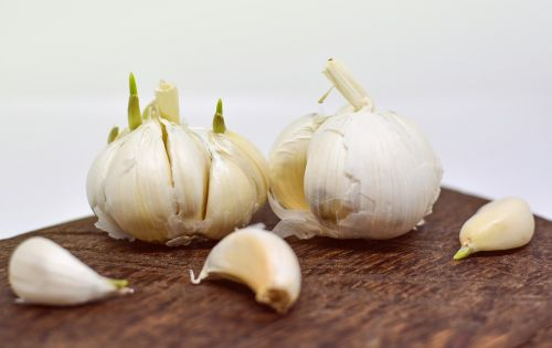 garlic ingredient food