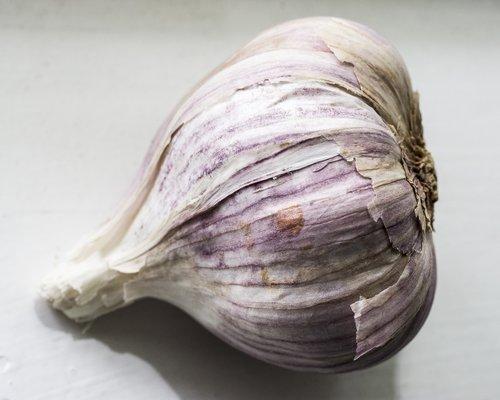 garlic  garlic bulb  food