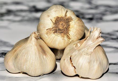garlic  clove of garlic  spice