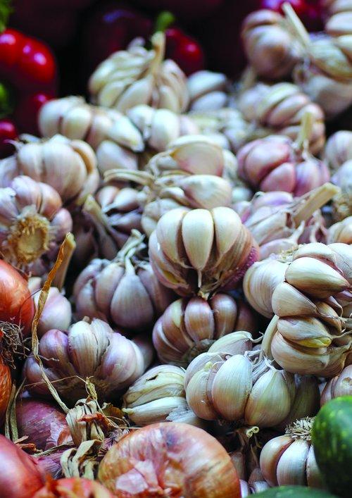 garlic  market  fresh