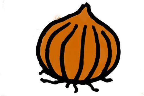 garlic drawing food