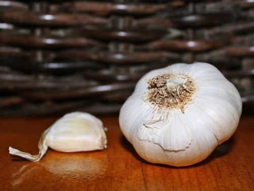 garlic clove of garlic decoration