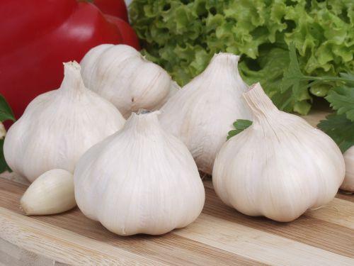 garlic white head