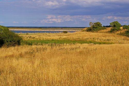 gate denmark danish coast
