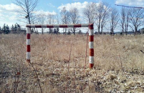gateway the pitch grass