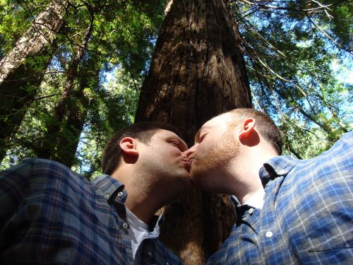 gay marriage love kiss