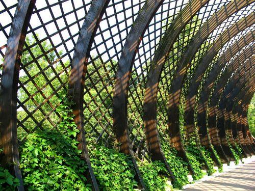 gazebo grille ivy