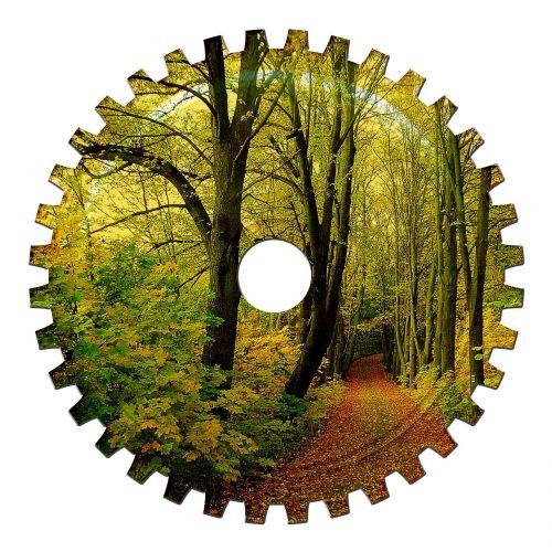 gear gears forest