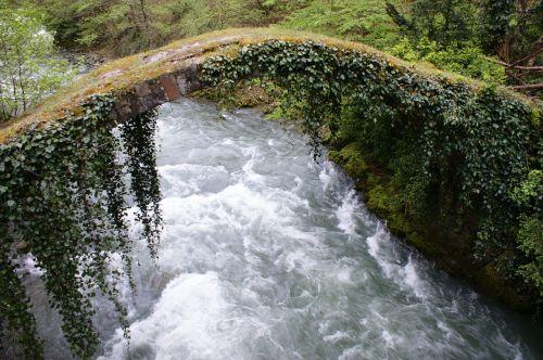 georgia river kintrishi