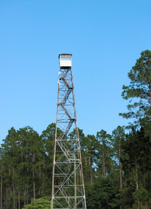 Georgia Forestry Lookout