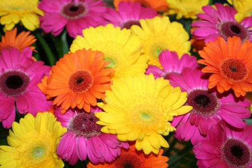gerbera summer bouquet of flowers