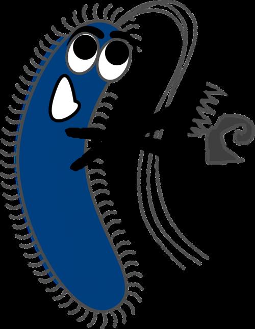 germ virus bacteria