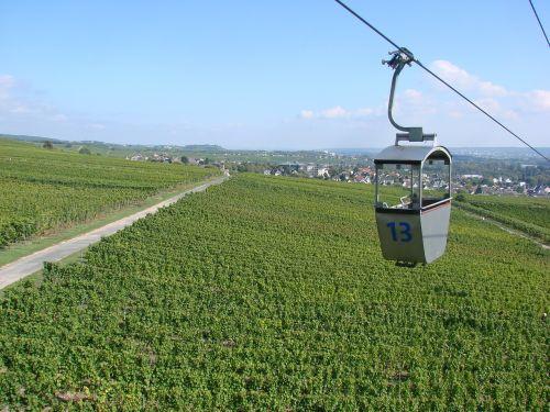 germany rüdesheim vineyards