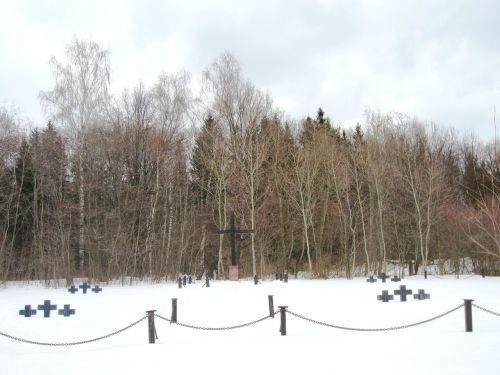 Vokietija,kraštovaizdis,dangus,debesys,miškas,medžiai,miškai,vaizdingas,žiema,sniegas,ledas,gamta,lauke,Šalis,kaimas