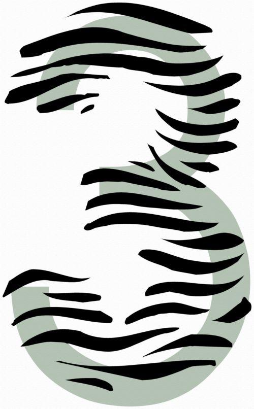 Number 3 Zebra
