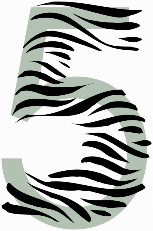 Number 5 Zebra