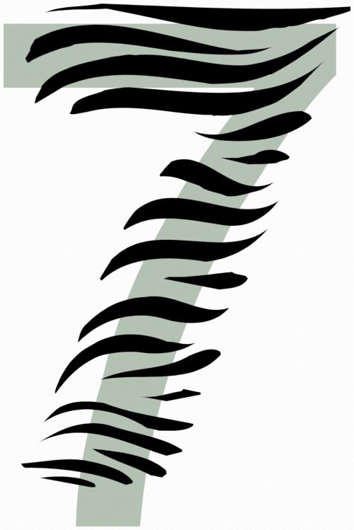 Number 7 Zebra