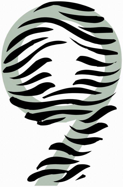 Number 9 Zebra