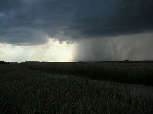 gewitterstimmung rain weather