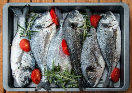 gilthead fish grilling