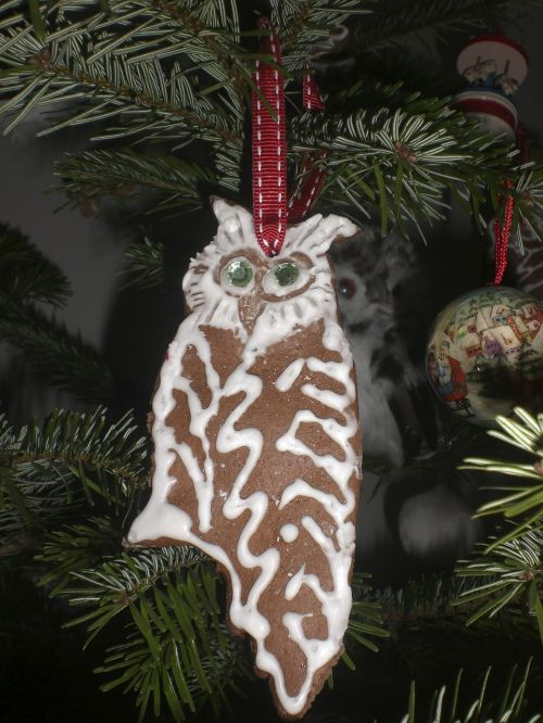 gingerbread,christmas tree,owl,tannenzweig