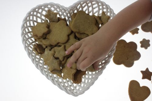 gingerbread the child's hand sweets