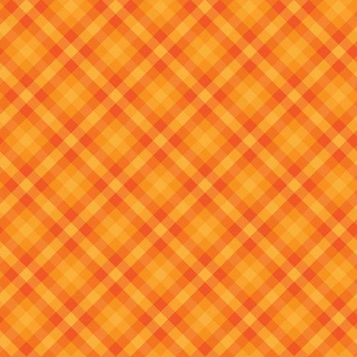 Gingham Checks Orange