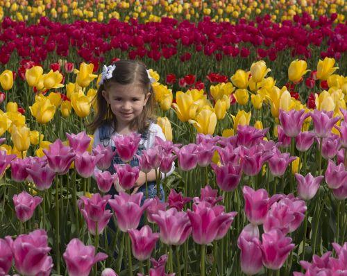 girl flowers tulips