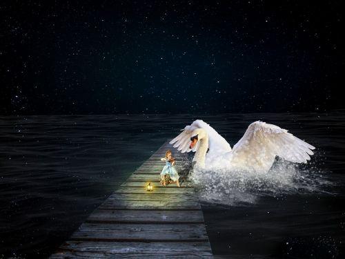 girl swan stars