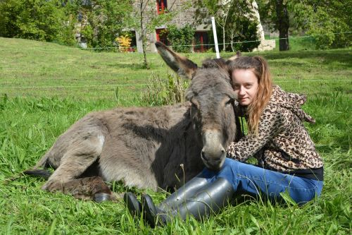 girl donkey complicity