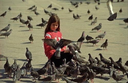 girl  bird  happines
