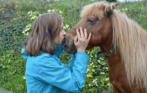 girl shetland pony kisses pony girl complicities girl pony