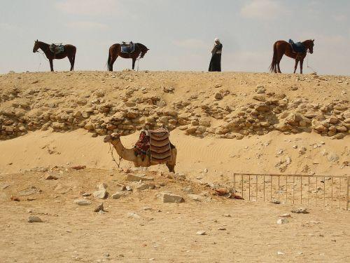 desert giza egypt
