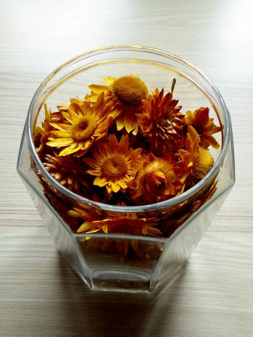 glass dried flowers colorful