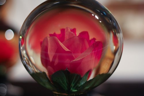glass  ball  flower