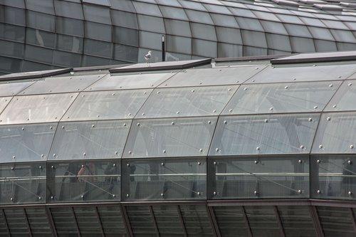 glass  bridge  architecture