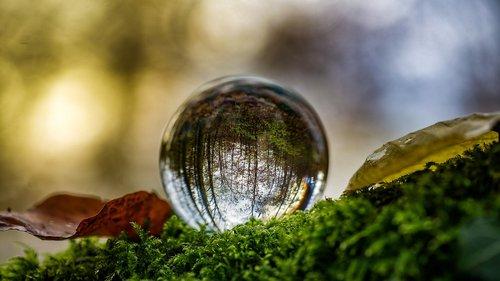 glass ball  autumn  ball