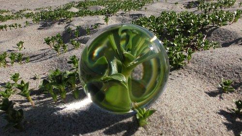 glass ball  ball  ball photo